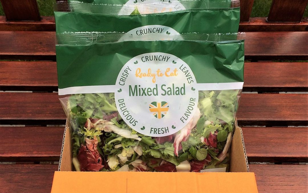 The NEW Dawndew Mixed Lettuce